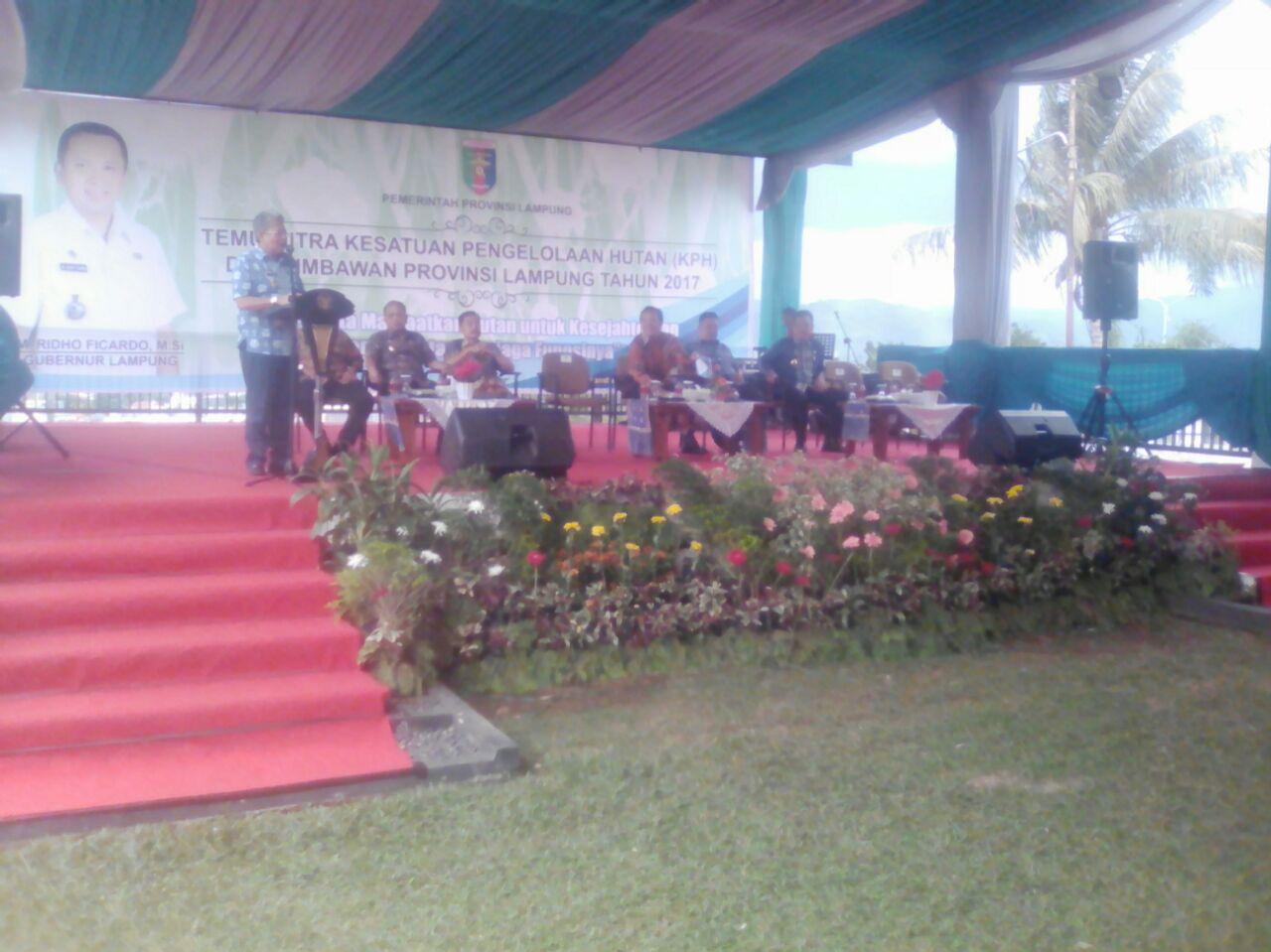 Kadishut Lampung : 54 % Hutan Lampung Rusak